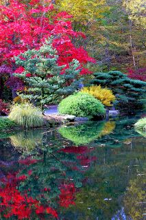 Today's Creations: Gibbs Gardens in Autumn
