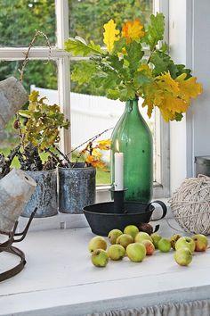VIBEKE DESIGN: Høstdager i orangeriet !