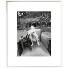 """East Urban Home 'Always Friends' Photographic Print Format: Collins Black Framed, Matte Color: Bright White, Size: 24"""" H x 18"""" W"""