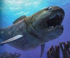 Risultati immagini per ANCIENT SEA MONSTERS FOSSILS