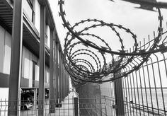 We live in prisons #barbwire #fences #insecurities #fear