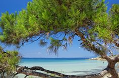 Kavourotrypes beach, Vourvourou. Location: Halkidiki, Greece