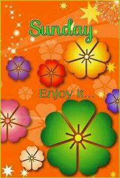 Happy Sunday Morning, Sunday Funday, Sunday Quotes, All Quotes, Good Morning Messages, Good Morning Quotes, Prayer Message, Sunday Greetings, Days Of Week