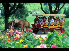 Our tour on Mackinac Island- by horse carriage since there are no cars permitted on the island.