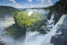 Международный день лесов: названы 15 красивейших лесов планеты « FotoRelax