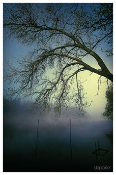 Morning on the River by DapoirierPhoto on Etsy https://www.etsy.com/listing/259123347/morning-on-the-river