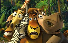 Madagascar: Melman, Marty, Alex and Gloria
