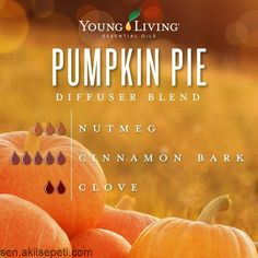 Get ready for the holiday festivities with this Pumpkin Pie seasonal essential o...