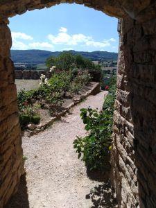 Un des passages du château de Berzé, en Bourgogne, dont je vous parle dans un article collaboratif. Plants, Beautiful Places, Places To Visit, Landscapes, Plant, Planets