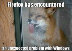 """Firefox has encountered an unexpected problem with windows""....Now this is my kind of humor!"
