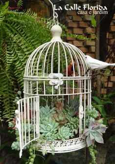bird cage and hangPlant succulents in an old bird cage and hang Beautiful DIY Planters Ideas 2001 – DECORATHING Succulent Birdcages Propagating Succulents, Succulent Gardening, Succulent Terrarium, Planting Succulents, How To Water Succulents, Watering Succulents, Diy Flowers, Flower Decorations, Garden Decorations