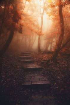 Embrace the light by Hanson Mao on 500px.com
