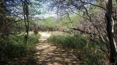 Cabo Rojo Wildlife Refuge