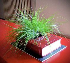 Recycled Book Planter by Gartenkultur