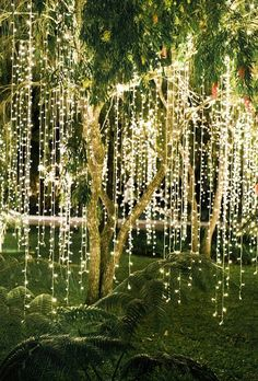 20 Ideas For Garden Wedding Ceremony Ideas Backdrops Icicle Lights, String Lights Outdoor, Outdoor Lighting, Lighting Ideas, Hanging Lights, Event Lighting, String Lighting, House Lighting, Room Lights
