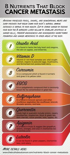 Did you know that 75%-85% of cancers diagnosed in one study in the United States showed that unhealthy lifestyle factors were the primary causes, and that researchers believe that 30% of deaths associated with cancer today can be prevented from diet alone? Here are 8 nutrients which you can absorb from just changing your diet which block cancer metastasis! Click on the infographic above to read on and discover more..