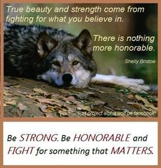 Fight for those who can't fight for themselves ... animals, children, seniors, etc ... When you do ... its a win/win ... :)