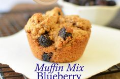 Homemade Mixes- Blueberry Muffins