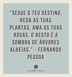 """""""Follow your fate, water your plants, love your roses. The rest is the shadow of aloof trees"""" ~Fernando Pessoa"""