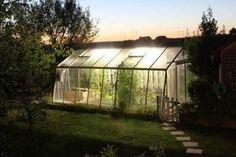 Dans cette serre, ni pesticide, ni herbicide, ni quoi que ce soit. Juste un savant mélange de permaculture et d'aquaponie ! Explications.