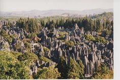 The Stone Forest  by ChinaDave2   Stone forest outside of Kunming, China
