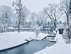 Snowy lake in March Tuscany, Villa, Snow, March, Gardens, Outdoor, Outdoors, Garden, Outdoor Games