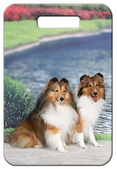 Set of 2 Shetland Sheepdog Luggage Tags >>> Check this awesome product by going to the link at the image.Note:It is affiliate link to Amazon.