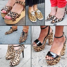 Love a leopard shoe.