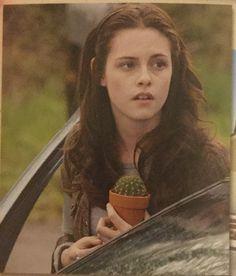 Arriving in Forks Twilight 2008, Twilight Saga Series, Twilight New Moon, Twilight Movie, Twilight Pics, Bella Cullen, Edward Bella, Kristen Stewart Twilight, Saturday Morning Cartoons