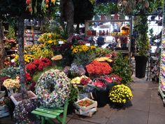 Flowers in the Amsterdam's Singel canal, which in the Middle Ages encircled the city as a moat, is home to the world's only floating flower market, Bloemenmarkt.