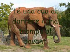 l' Elefant (Mireu allà dalt) - YouTube
