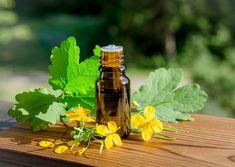 Hot Sauce Bottles, Food, Gardening, Pineapple, Chemistry, Essen, Lawn And Garden, Meals, Yemek