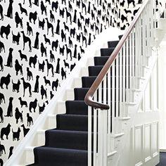 best in show wallpaper by osborne & little.