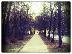 Сквер в Академгородке.