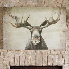 He friendly, he happy, and now Maxwell the Moose Wall Art wants to join you and make your home feel woodlands-cozy in his warm, moose-like    way. This absolutely charming graphic image is a print on canvas. Makes a great seasonal statement brings a sense of naturally fun, wintry style into your    home for the season.            Charming winter woodlands print of a moose                Print on canvas, stretched on a pinewood stretcher frame                A great statement in any space ...