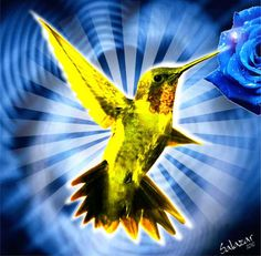 """COLIBRI PARA TRANSMUTAR MEMORIAS CON HO'OPONOPONO:  COLIBRI es una herramienta que corta la aflicción, cancela la energía negativa de aquella memoria cambiando la vibración atrayendo para ti, a partir del ahora, la prosperidad, la alegría de la abundancia de recursos en tu vida. el significado, el simbolismo de Colibrí es """"Prosperidad. Beneficios inesperados. El éxito profesional. Triunfo sobre las dificultades""""."""