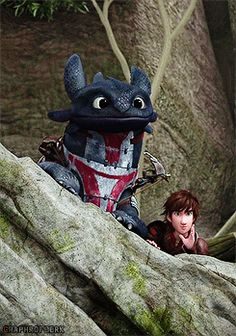 RTTE | Toothless | Hiccup