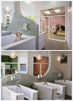 Banheira pet shop ideas for 2019 – Stephanie Kimberly – pet resort Dog Grooming Shop, Dog Grooming Salons, Dog Grooming Business, Dog Spa, Pet Hotel, Pet Boarding, Pet Resort, Dog Salon, Dog Wash