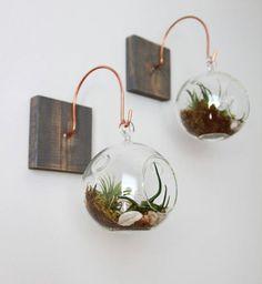 vase-decoration-plante-jardin