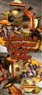 Foodie Quine: Mulled Gin & Ginger Beer Winter Warmer
