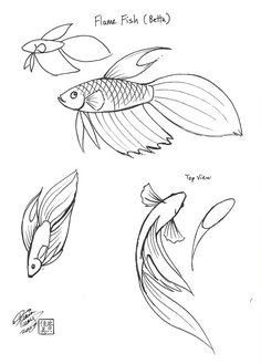 Flame Fish by ~Diana-Huang on deviantART (The fluidity of the top view is great)