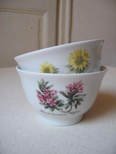 2 Bols Winterling création Mobil / Collector / Bol en porcelaine / Décor herbier botanique / Fleur jaune et rose / Vintage Allemagne-France