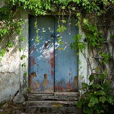 Wild garden @ Stelor, Gotland, Sweden http://stelor.se