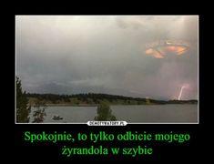 Odbicie żyrandola Polish Memes, Aesthetic Memes, Funny Mems, Text Memes, Pranks, Have Time, Stranger Things, The Funny, I Laughed
