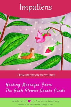 Impatiens - Bach Flower Oracle Card by Susanne Winberg. Message: Take your time. With the Bach Flower Oracle Cards you can work in a playful and intuitive way with the flower essences. Reiki, Bach Flowers, Healing Codes, Language Of Flowers, Angel Cards, Oracle Cards, Flower Cards, Herbalism, Positive Messages