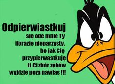 Jezu, ile to już lat ma Wtf Funny, Funny Cute, Found Poetry, Funny Mems, Cute Memes, Just Smile, Funny Stories, Man Humor, Best Memes