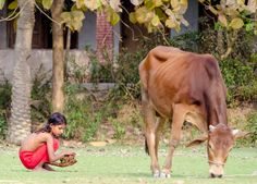 A dirty Job..Bangladesh