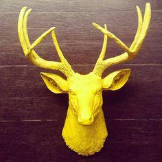 Cabeza de venado #venado #homedecor #yellow #amorvegetal #elmerkato #deer