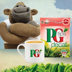 Knitting Pattern For Pg Tips Monkey : Monkey with Chimp T-Shirt PG Tips Monkey is cool! Pinterest Monkey and ...