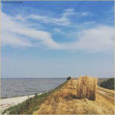 Singergie naturali. La #PicOfTheDay #turismoer di oggi va a spasso per le #VallidiComacchio, dove la campagna si avvicina al mare. Complimenti e grazie a @tomfagg / Natural synergies. Today's #PicOfTheDay #turismoer wanders through the #Comacchio Valleys, where the countryside gets close to the sea. Congrats and thanks to @tomfagg